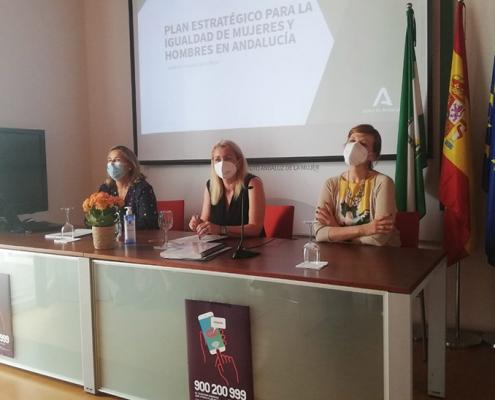 El IAM ultima el Plan estratégico de igualdad con un servicio asesor para ayuntamientos y universidades